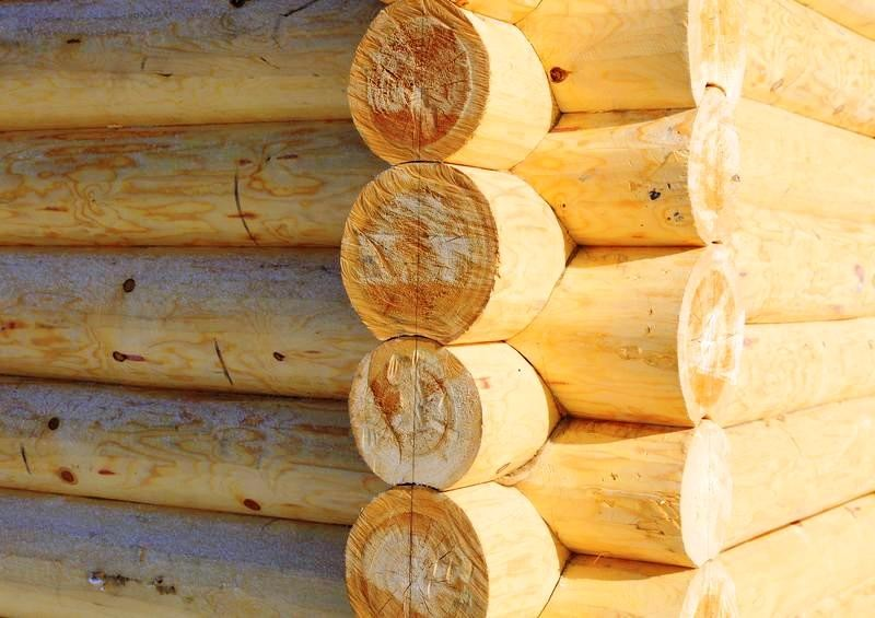 Бревно картинки сруб